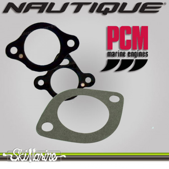 PCM Gasket, Thermostat Housing (6.0)