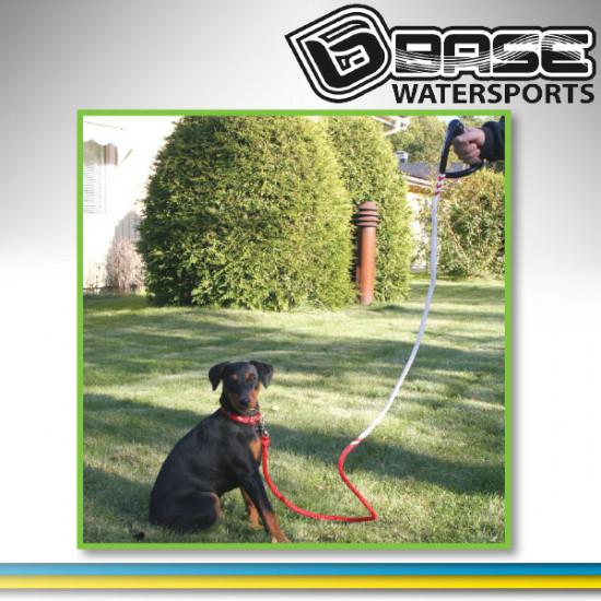 Base Dog leach